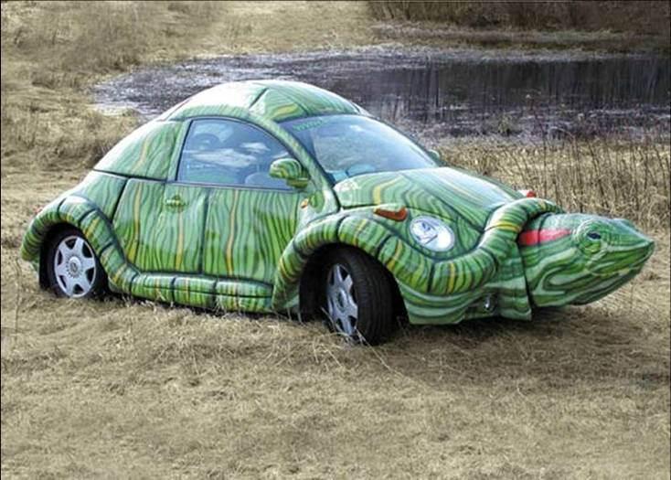 20 – Carro ou tartaruga? Que tal os dois?
