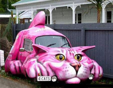 21 – Carro gato (isso mesmo!)