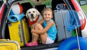 7 dicas para organizar sua bagagem no carro