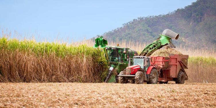 O etanol brasileiro – renovável mas com impactos ambientais